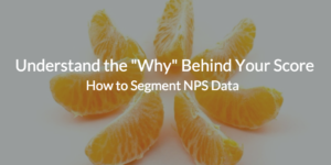 "How to Segment NPS Data to Understand the ""Why"" Behind Your Score"