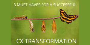 3 Must-Haves for a Successful CX Transformation