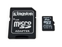 Kingston_2GB_Micro_SD_Card_with_AdapterpgtThumbnail.jpg