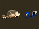 The_Original_Blue_HedgehogrtyThumbnail.png