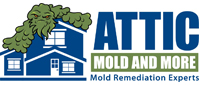 Website for Attic Mold and More
