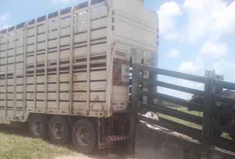 CCJ aprova altura 4,40 para 4,70 Caminhões Boiadeiros