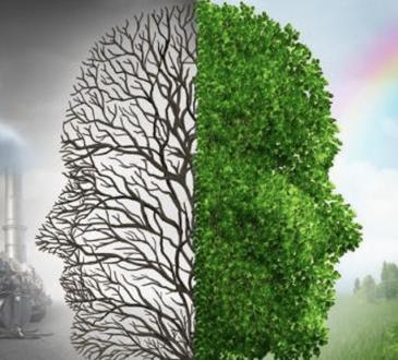 Como contribuir para o meio ambiente através do Sistema Euro 5?