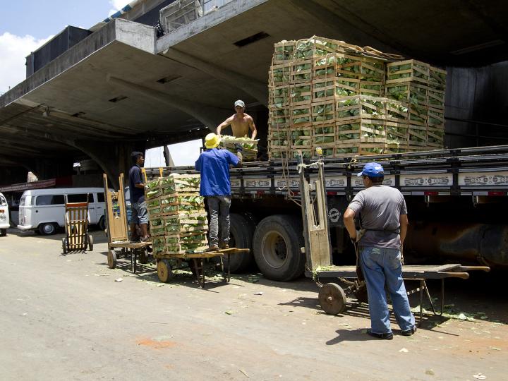 Transporte de alimentos: como realizar de maneira correta