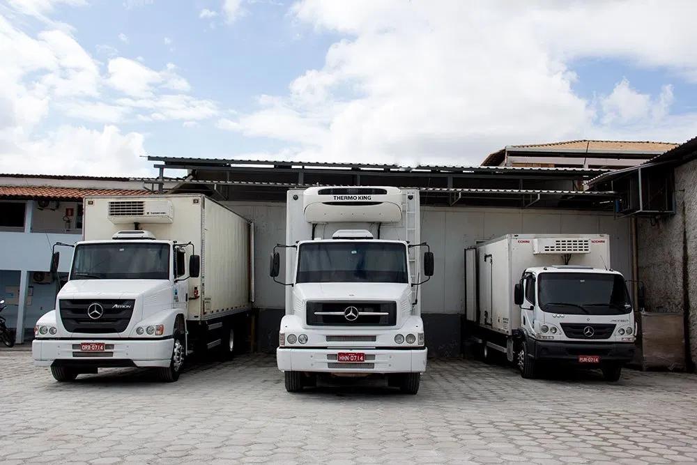 Transporte de alimentos congelados, como carnes