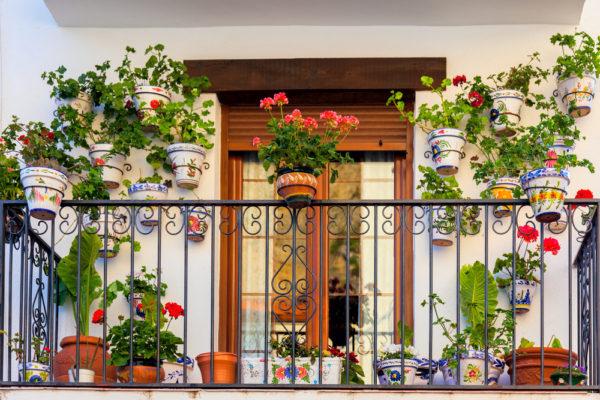 7 Tips For Creating A Beautiful Urban Balcony Garden