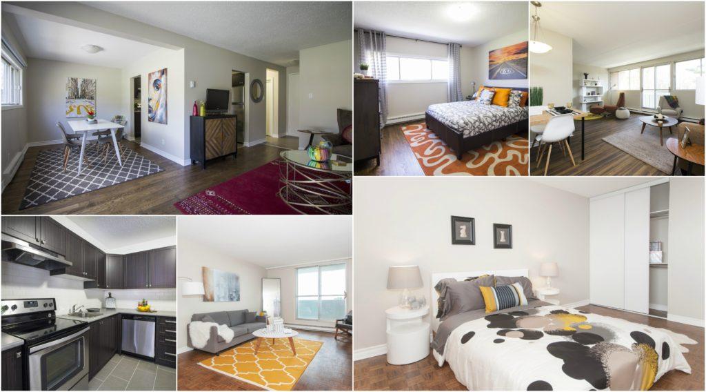 Forest Ridge Suite_ottawa apartments_ottawa townhomes_clvgroup