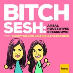 Casey Wilson and Danielle Schneider Bitch Sesh: Live