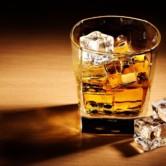 Whisky Sugar Baby Daddy Casal Mundo Relacionamento Gay