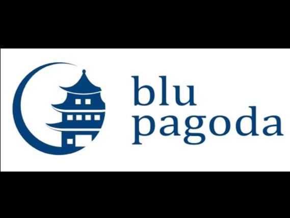 Blu Pagoda LLC