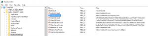 RedboothSettings key in Windows Registry