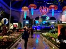 Video: What's There To Do In Vegas Besides Gambling?
