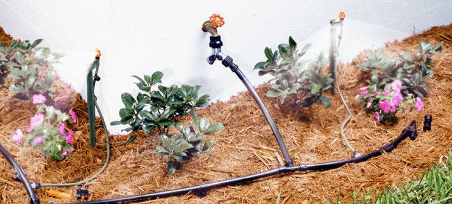Installing A Drip Irrigation System Bob Vila
