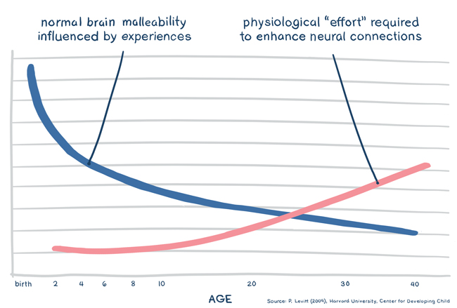 brain-malleability2B