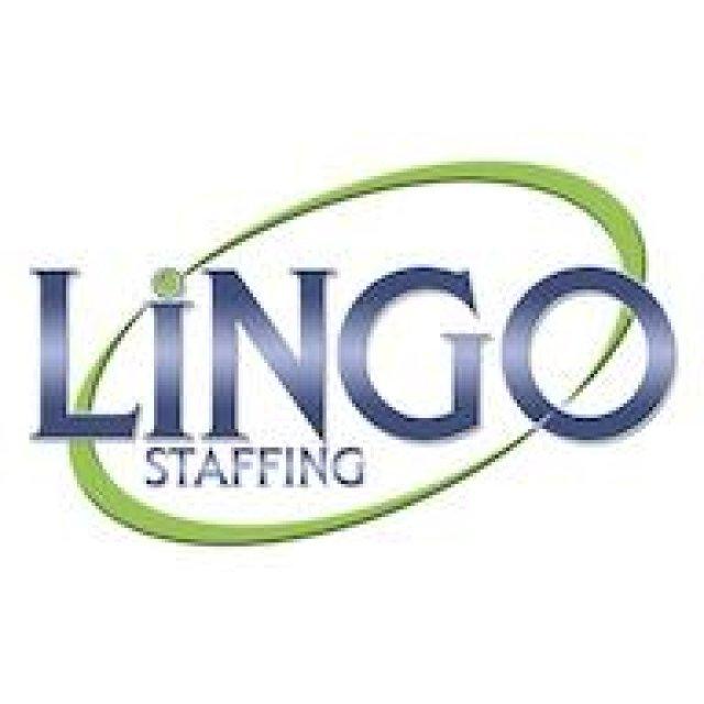 Lingo Staffing