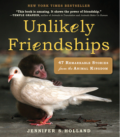 Unlikely Friendships - cover