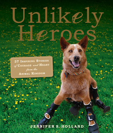 Unlikely Heroes - cover