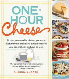 One Hour Cheese Book