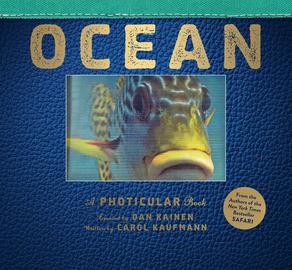Ocean - cover