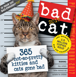 Bad Cat Page-A-Day Calendar 2017 - cover