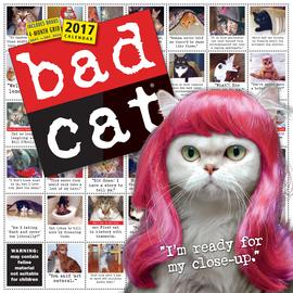 Bad Cat Wall Calendar 2017 - cover