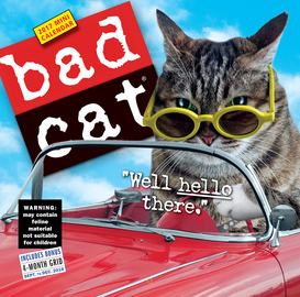 Bad Cat Mini Wall Calendar 2017 - cover