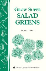 Grow Super Salad Greens - cover