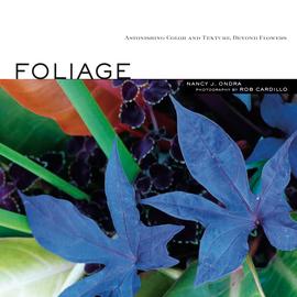 Foliage - cover