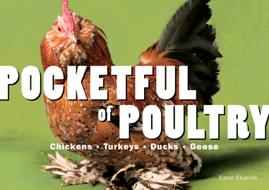 Pocketful of Poultry - cover