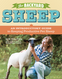 The Backyard Sheep - cover