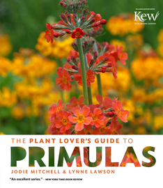 The Plant Lover's Guide to Primulas - cover