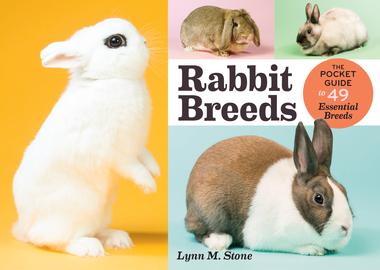 Rabbit Breeds - cover