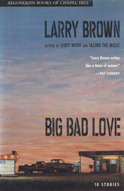 Big Bad Love - cover