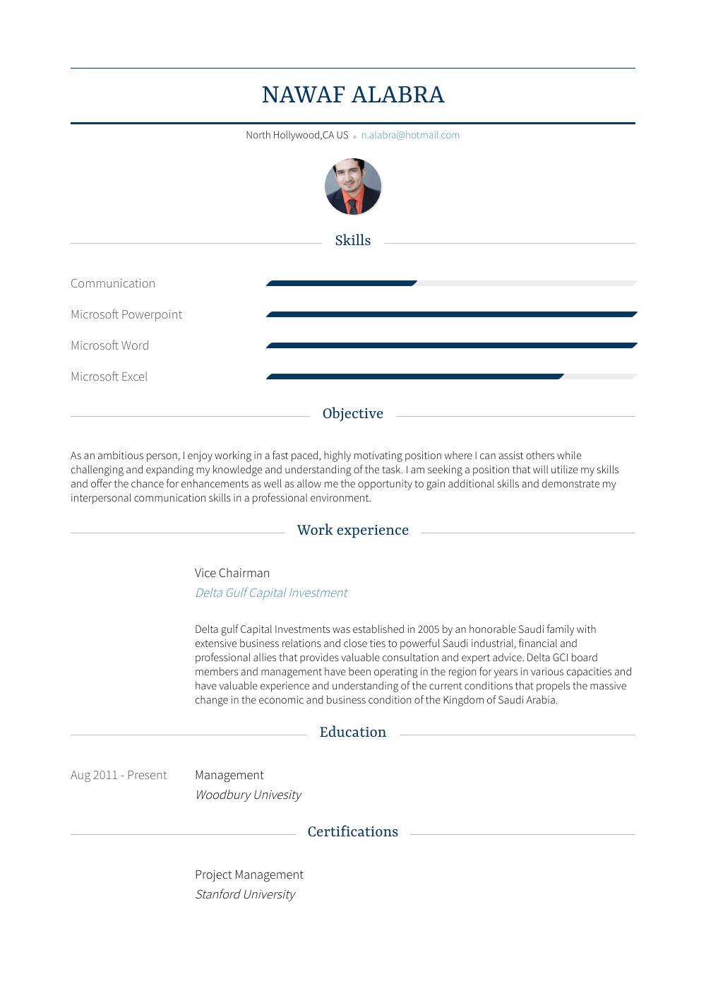 Vice Chairman Resume Sample
