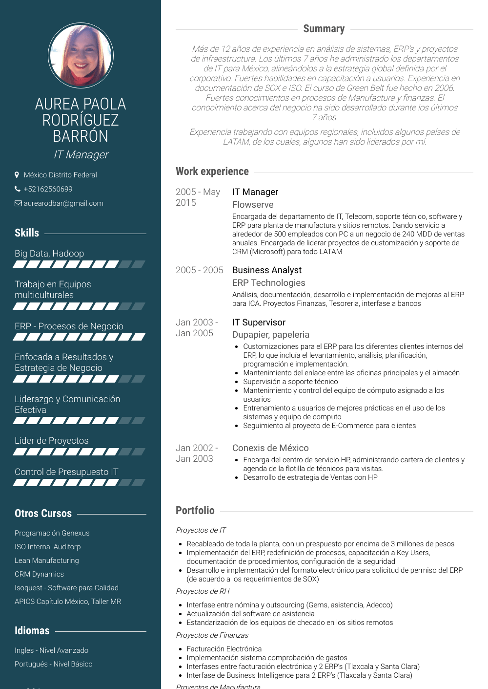 it manager  resume samples and templates  visualcv