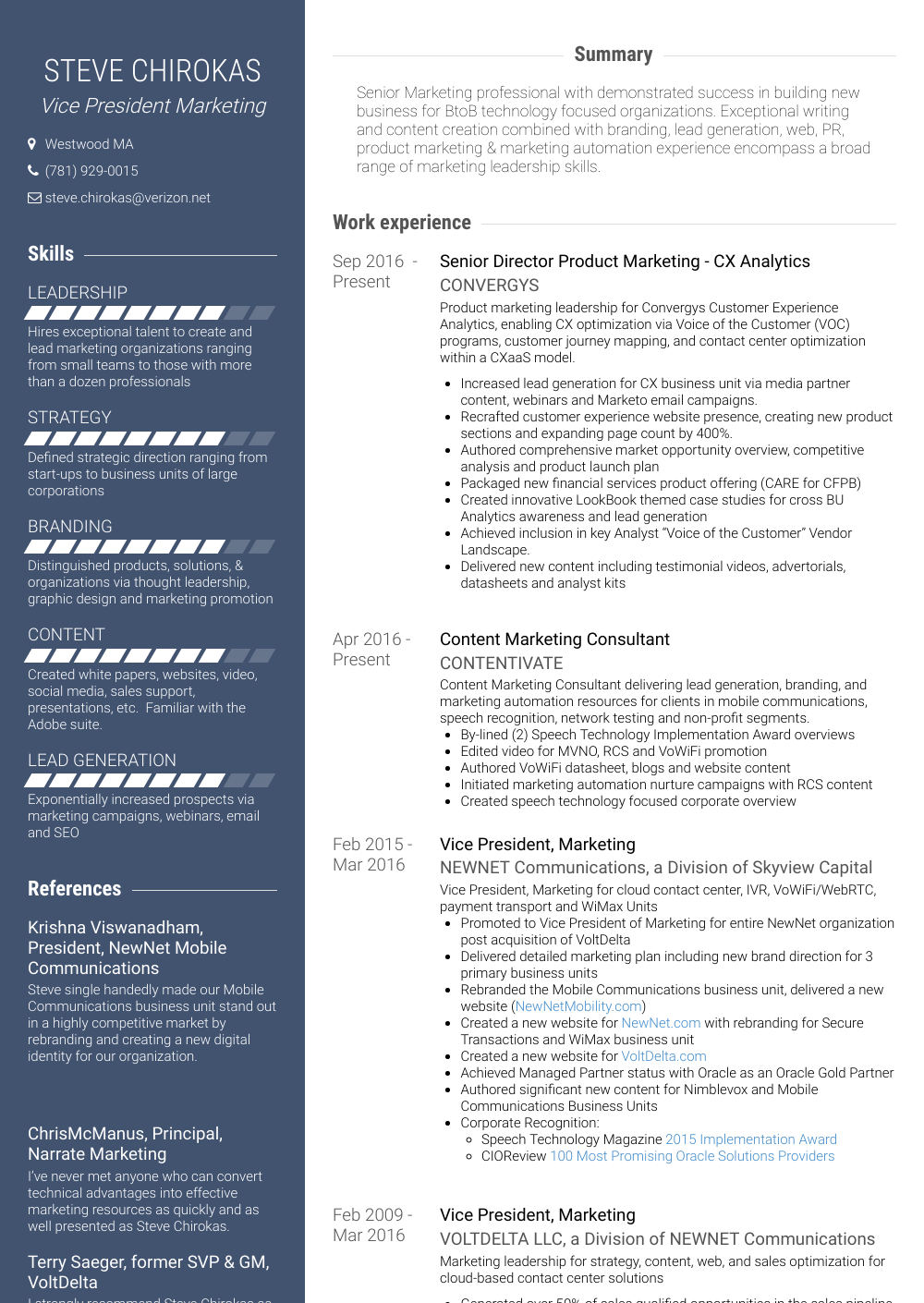 Vice President, Marketing Resume Sample