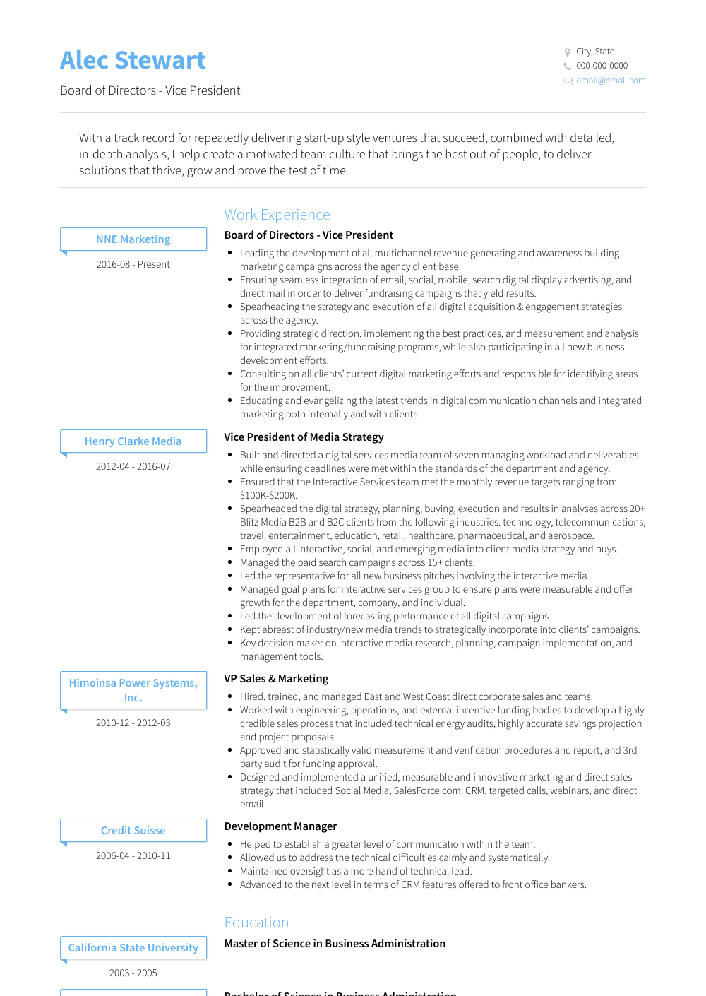 Board Of Directors - Vice President Resume Sample and Template