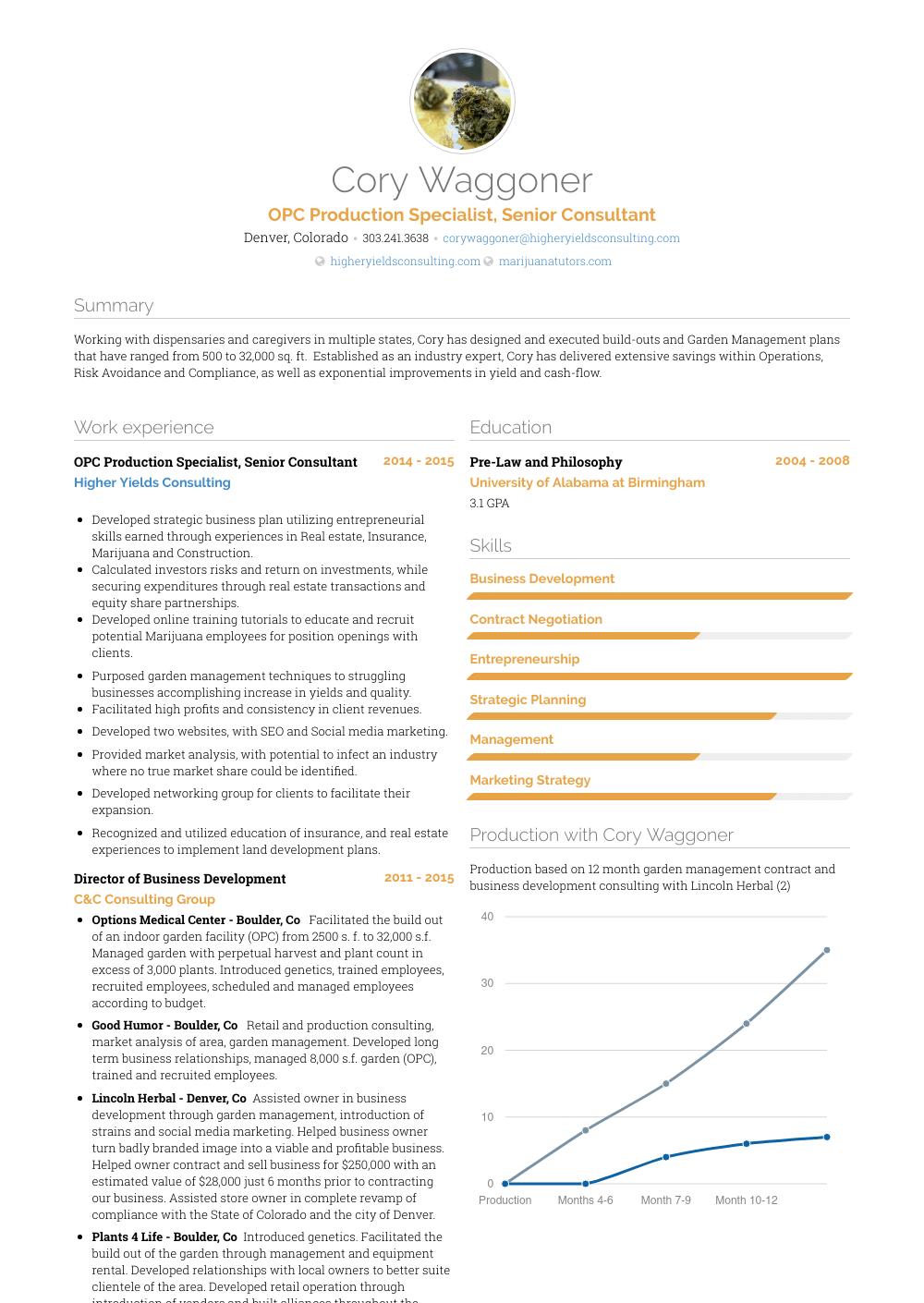 Senior Consultant - Resume Samples & Templates | VisualCV