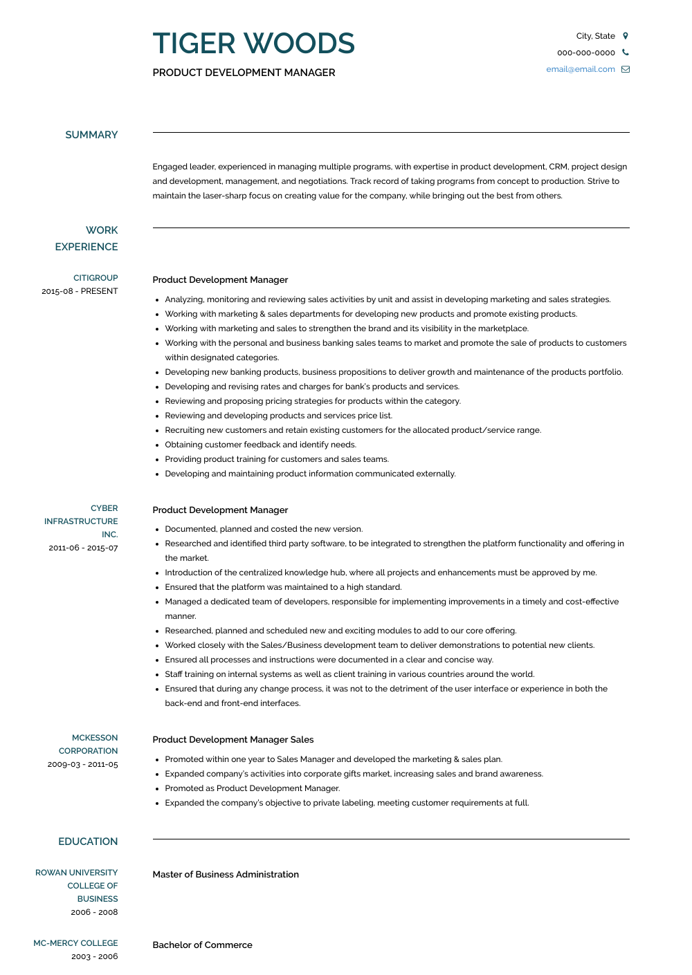Development Manager Resume Samples And Templates Visualcv
