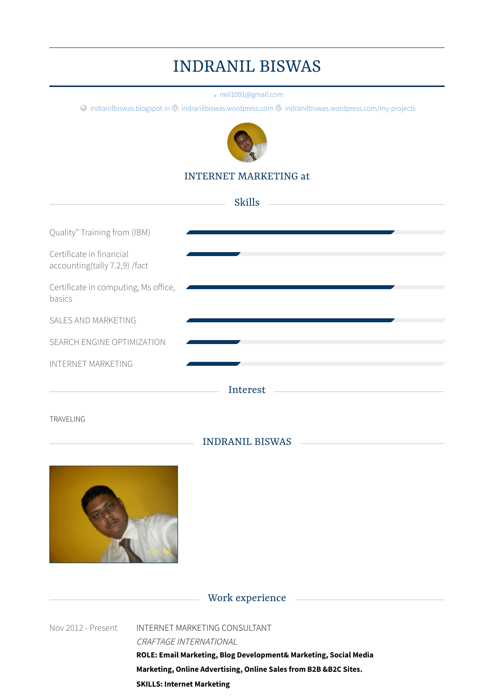 Internet Marketing Consultant Resume Sample