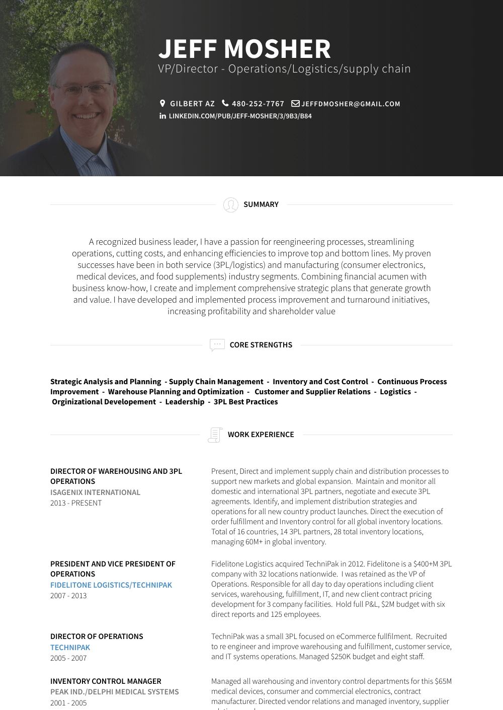 vice president of operations resume samples amp templates