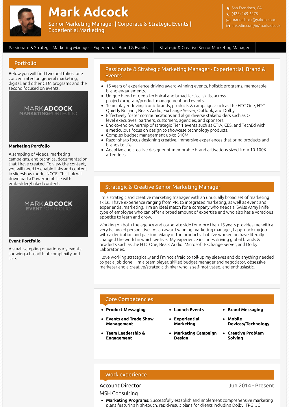 Account Director Resume Sample