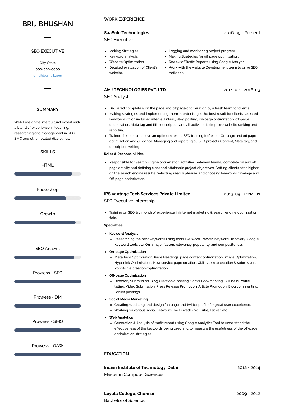 SEO Executive Resume Sample
