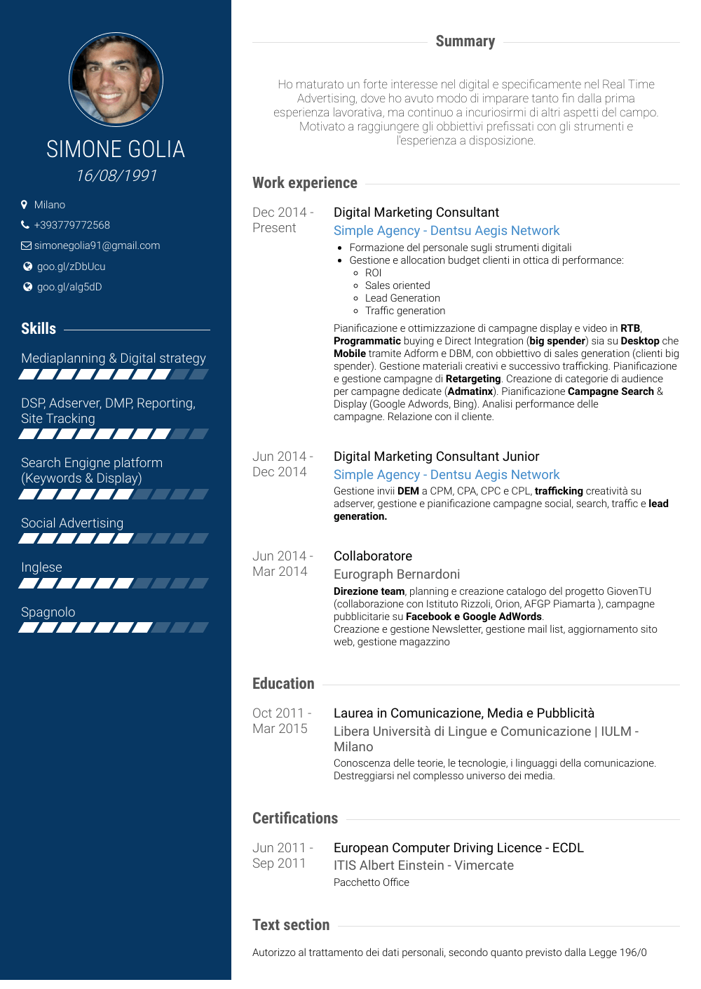 Digital Marketing Consultant Resume Sample