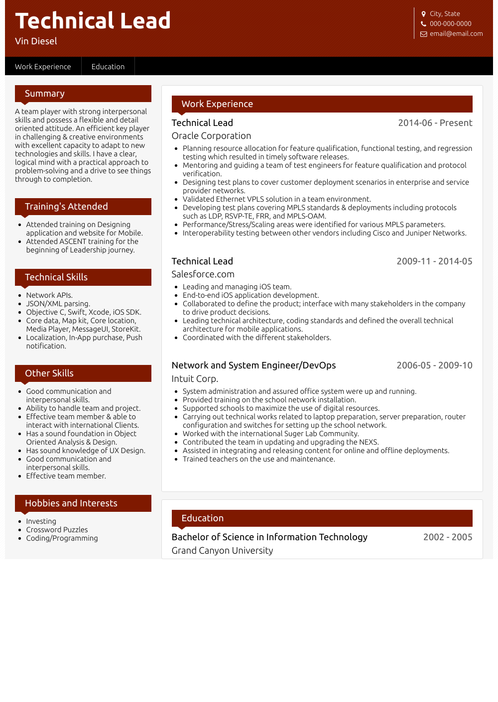 Technical Lead Resume Sample