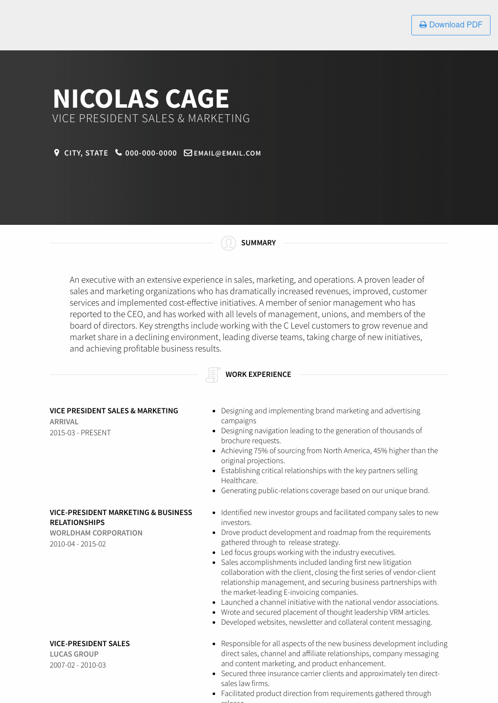 Vice President Sales & Marketing Resume Sample and Template
