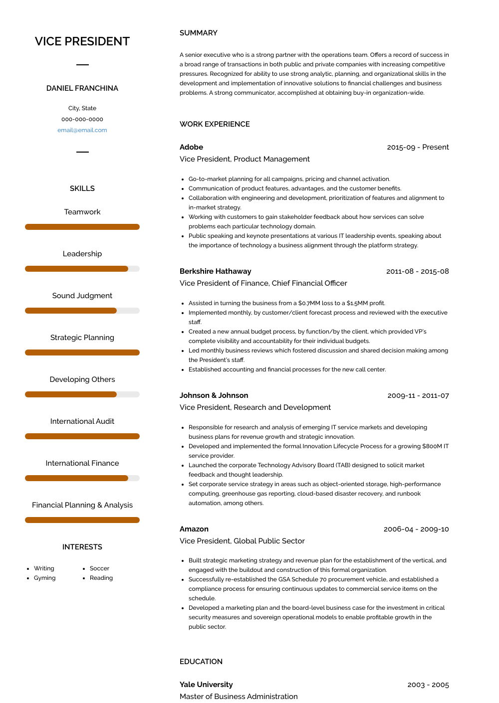 Vice President, Product Management Resume Sample and Template