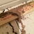 Arizona Termite Specialists - Pest Control in Scottsdale, AZ - Gallery Photo 5
