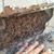Arizona Termite Specialists - Pest Control in Scottsdale, AZ - Gallery Photo 6