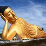 Lying Buddha statue in Wat Sri Sunthon temple on Phuket_231074467